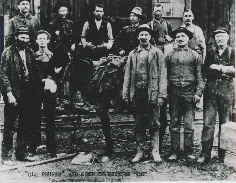 Miners and a donkey who worked at the Hock Hocking Mine