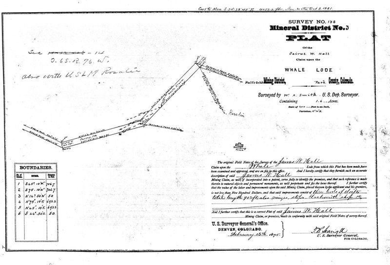 Whale Lode Survey, 1875
