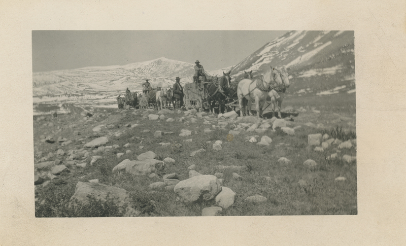 Ore wagons travelling through the American Flats in the 1920s