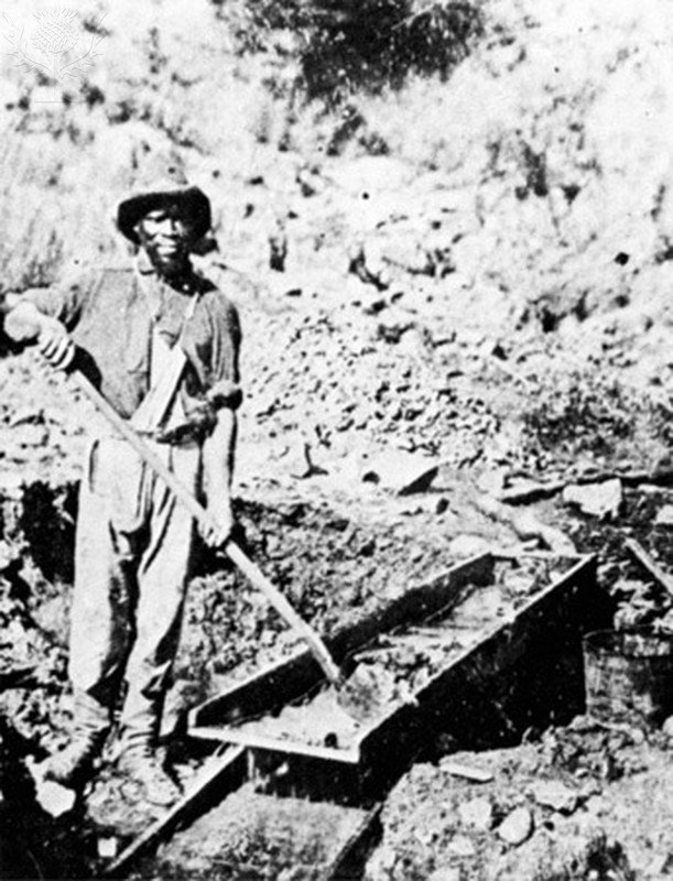 California Gold Rush, 1852.
