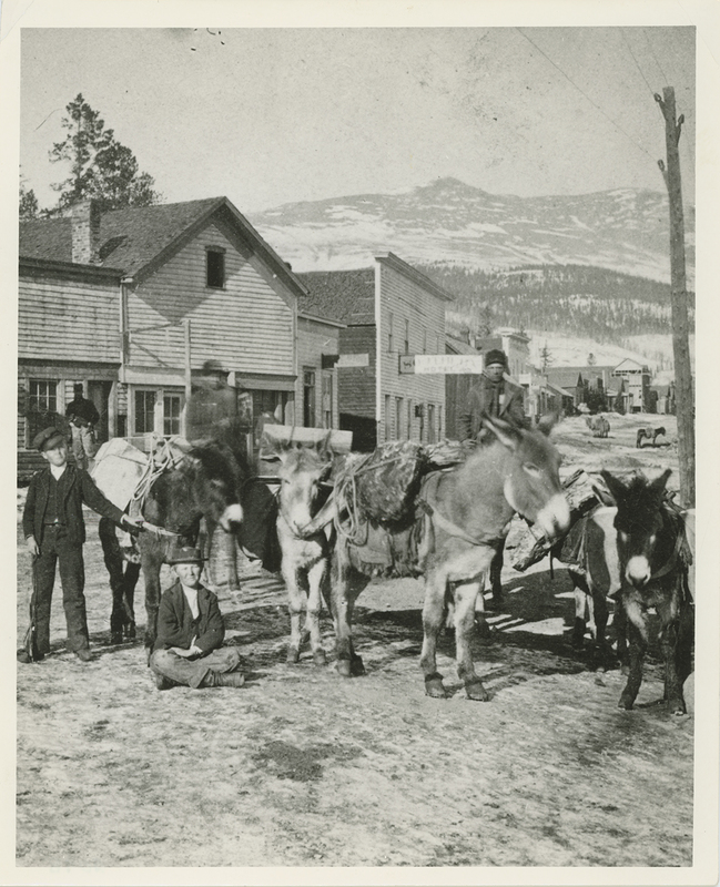 Jack train on its way to a mine at Alma in the late 1800s